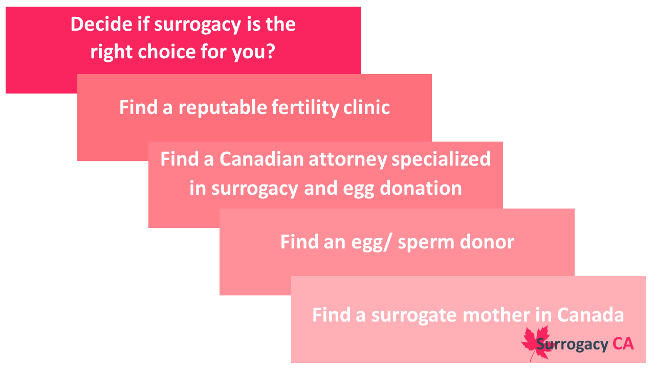 Five step surrogacy guide